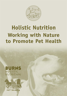 Holistic Health Guide for Dogs and Cats